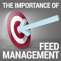 BLOG-The-Importance-of-Feed-Management